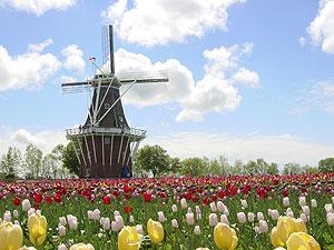 Holland CVB