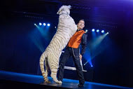 Greg Frewin & White Tiger