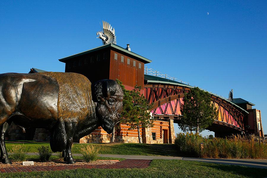Kearney Buffalo