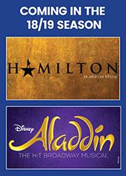 dallas summer musicals aladdin & hamilton
