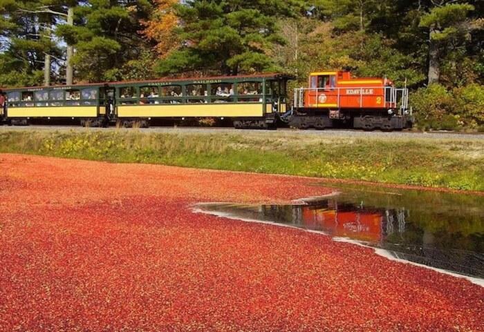 Historical Railroad Route, Edaville Railroad Park, Carver, Mass.